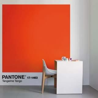 Tollens-Pantone-Bureau.jpg