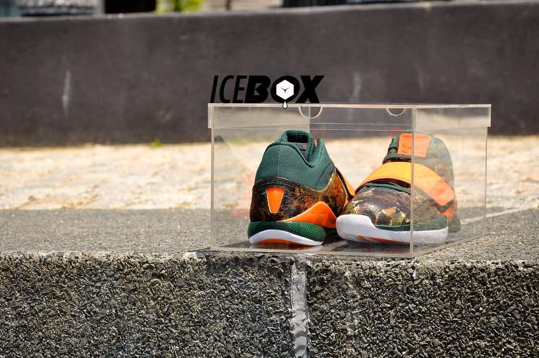 ICEBOX – La boîte parfaite pour vos Sneakers