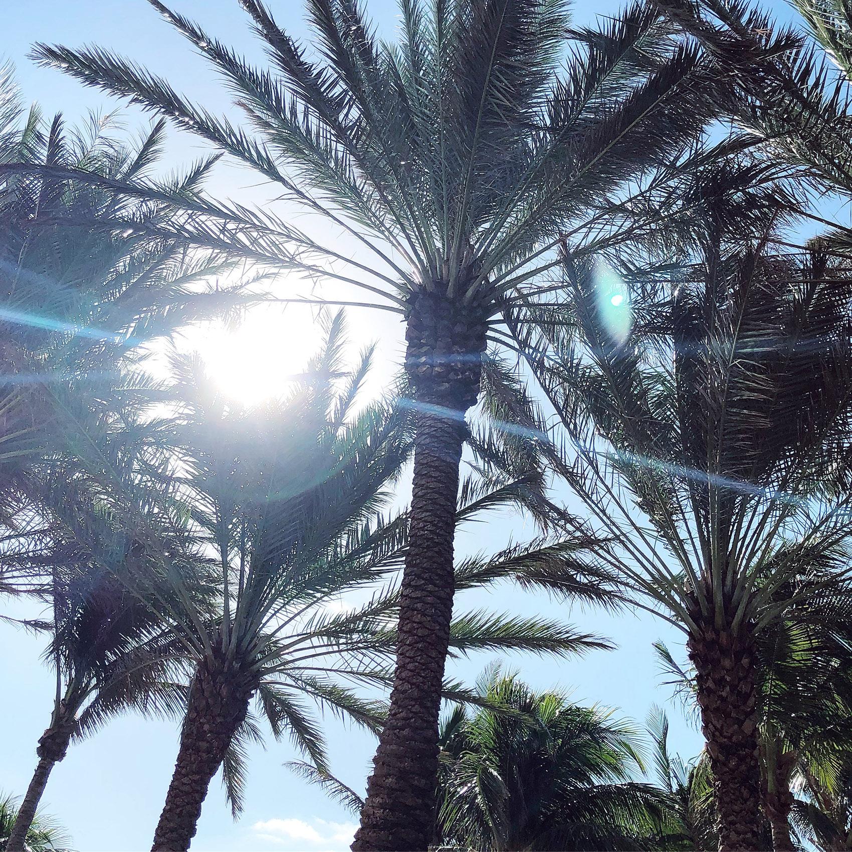 MIAMI BEACH | HYPE CITY GUIDE 2017
